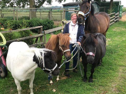 Urlaub auf dem Bauernhof mit Ponyreiten