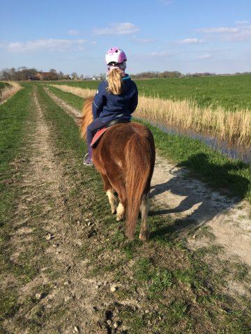 Ponyreiten im Urlaub